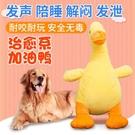 狗狗玩具耐咬小型犬陪睡發泄解悶發聲玩具寵物用品泰迪金毛狗玩具