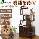 【培菓平價寵物網】 日本Richell》ID89831木製愛貓招待所貓跳台-M高156.5cm 可宅配