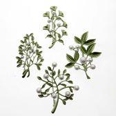 配飾女款合金樹葉珍珠系列 綠色烤漆胸針胸花別針絲巾扣 都市韓衣
