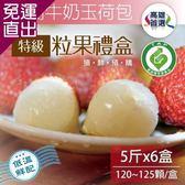 家購網嚴選 大樹牛奶玉荷包特級粒果禮盒5台斤x6盒(120-125顆/盒)【免運直出】