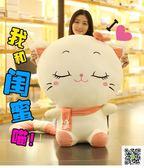 大臉貓毛絨玩具公仔女生可愛韓國布娃娃玩偶女孩抱著睡覺的娃娃萌  玫瑰女孩