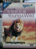 影音專賣店-P09-098-正版DVD*紀錄【物競天擇06:生命的延續】-Discovery