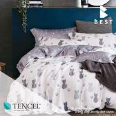 天絲床包二件組 單人3.5x6.2尺 仰星星 100%頂級天絲 萊賽爾 附正天絲吊牌 BEST寢飾