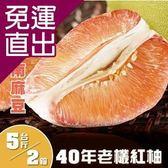 普明園 嚴選台南麻豆40年老欉紅柚5台斤/箱,(共2箱) EE0940015【免運直出】