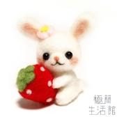 羊毛氈戳戳樂成人手工DIY制作抱草莓兔子【極簡生活】