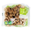鮮菇道有機鴻喜菇150g