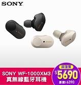 SONY WF-1000XM3 真無線藍牙降噪耳機 藍牙耳機 公司貨 (送限量藍牙喇叭) [富廉網]