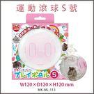 *KING WANG*日本Marukan 鼠鼠跑跑 運動球 透明滾球 S號 【ML-113】