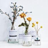 ins風北歐簡約家居裝飾品透明水培玻璃干花器插花瓶客廳創意擺件