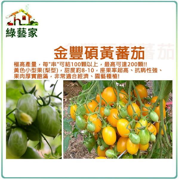 【綠藝家】大包裝G43.金豐碩黃蕃茄種子50顆