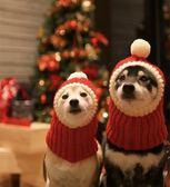 寵物狗小紅帽英短藍白貓帽子泰迪邊牧法斗金毛大狗圣誕帽狗新年帽