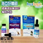 【殿堂寵物】海亞 好關節 貓用犬用濃縮玻尿酸30CC - 關保護關節 緩解疼痛 液狀 好吸收