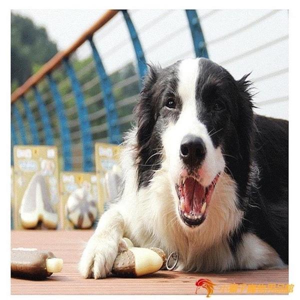 寵物彎骨磨牙棒狗狗骨頭玩具耐咬寵物玩具磨牙發聲玩具【小獅子】