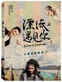 漂流遇見你 DVD 免運 (購潮8)