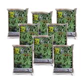 (組)靚土多肉植物用 3公升-8入