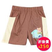 【愛的世界】鬆緊帶純棉短褲/4歲-台灣製- ★春夏下著