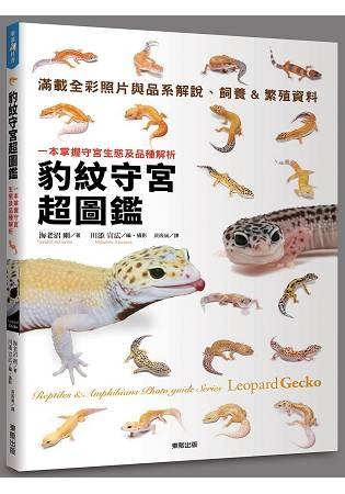 豹紋守宮超圖鑑:一本掌握守宮生態及品種解析