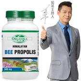 Organika優格康-(即期品)頂級蜂膠500mg 100顆膠囊 效期2020.06.30