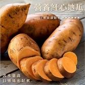 【WANG-全省免運】台農66號紅地瓜(15台斤±10%)
