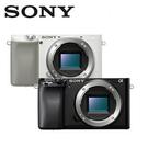 SONY A6100 單機身(公司貨) ILCE-6100 微單眼 贈電池+16G高速卡+座充+吹球清潔組+保護貼
