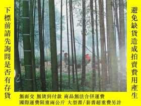 二手書博民逛書店Recent罕見Research on Bamboos 音譯:竹