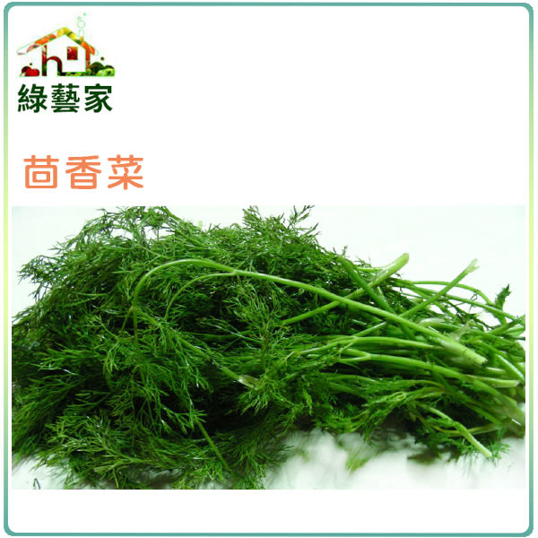【綠藝家】F07.茴香菜種子11克(約7300顆)