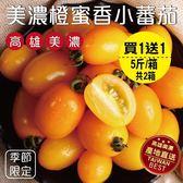 【果之蔬-買1送1】橙蜜香小蕃茄 共2箱(5斤±10%/箱)