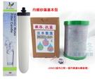 適用能量活水機 基本型 濾心組 丹頓濾心矽藻(聖燭型)+GN03銀添抗菌碳纖維鎖牙濾心,2600元