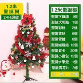 全館83折 現貨 豪華聖誕樹套餐1.2米加密套裝商場酒店節日裝飾 180枝頭64個配件C