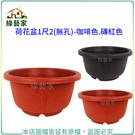 【綠藝家】荷花盆1尺2(無孔)-咖啡色....