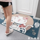 客廳地毯 進門地墊家用門口防滑門墊客廳大門入戶門地毯網紅衛生間吸水腳墊【麗人雅苑】