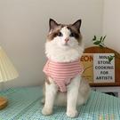 夏天IG寵物狗狗貓咪衣服夏季薄款防止掉毛藍白加菲無袖背心夏裝【小狮子】