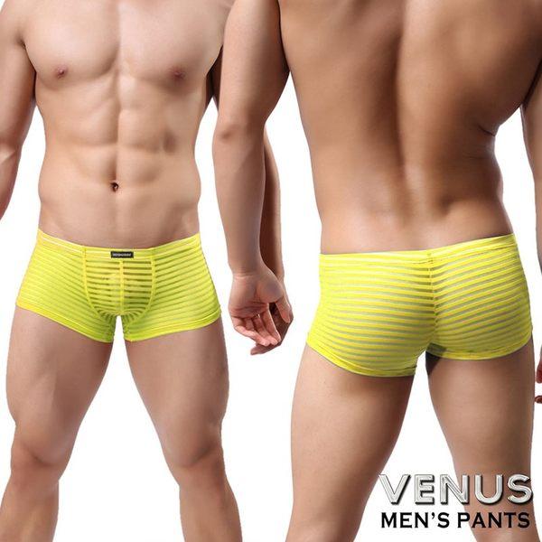 情趣用品 男性商品 情趣內褲男同志 VENUS 男士性感情趣 條紋性 四腳平口褲 黃