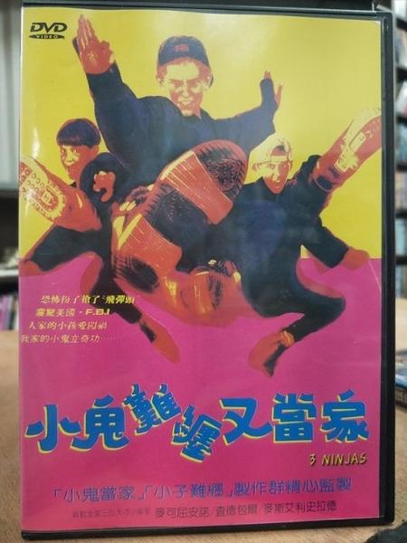 挖寶二手片-D10-053-正版DVD-電影【小鬼難纏又當家】-麥可屈安諾 查德包爾(直購價)