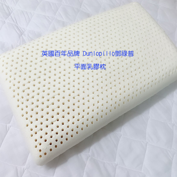 【貝淇小舖】 百貨專櫃 英國百年品牌 Dunlopillo鄧祿普 純天然乳膠枕.一般加大平面型/人體工學型