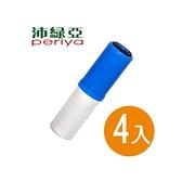 沛綠亞-雙效濾芯-4入