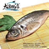 大溪漁港竹筴魚 / 四破魚 / 硬尾仔 ( 中尾 300g _一公斤±10% )【大溪現流】