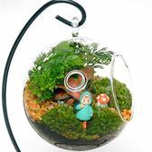 微景觀生態瓶迷你綠植盆栽diy苔蘚植物創意玻璃瓶室內小屋盆景