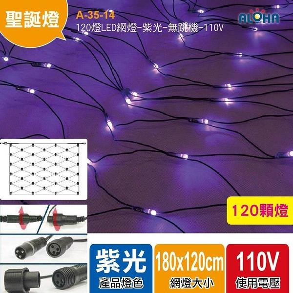 LED聖誕燈飾批發 120燈LED網燈-紫光-無跳機-110V A-35-14