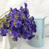 進口乾燥天然星辰花-乾燥花圈 乾燥花束 拍照道具 手作素材 室內擺飾 乾燥花材 鄉村風-48元/束