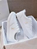 小雛菊小白鞋女夏季薄款女鞋新款白鞋