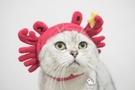寵物頭套可愛螃蟹頭套英短