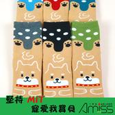 Amiss 舒柔全起毛止滑直版童襪-小柴犬7-12歲(3雙入)-【C403-1】