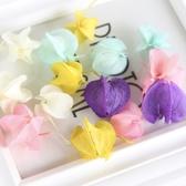 花永生花材,彩色燈籠果,每份3顆裝
