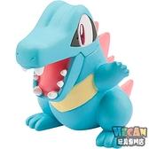 Pokemon精靈寶可夢 MS-33 小鉅鱷 神奇寶貝公仔 (TAKARA TOMY) 97581