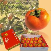 摩天嶺甜柿8A8粒-季節限定