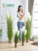 仿真蘆葦草假草盆栽北歐植物裝飾盆景擺件ins風家居室內落地綠植 交換禮物 YXS