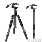 照相機專業三腳架單反碳纖維手機三角架輕便攜支架微單佳能索尼康獨腳架 自由角落