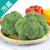美國青花菜1粒(180g±5%/粒)【愛買冷藏】