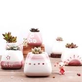 CARMO 海洋/櫻花系列陶瓷盆(含土+植物) 十款多肉植物花盆盆栽【ME14003】